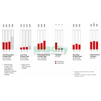 Halliburton Social Data Corporate Sustainability Report MOVES