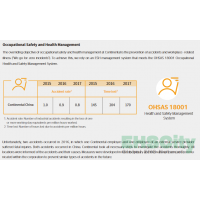 Safety&Environmental Performance (CONTINENTAL)annual_report_2017_en